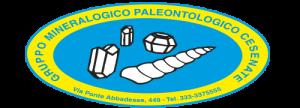 logo_minarali_fossili